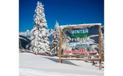 Sign on the snow for Winter forest run 2015