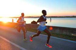 Moonlight Half Marathon 2015
